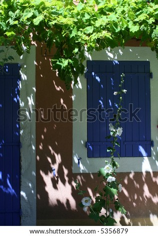 colorful french house with vine - stock photo