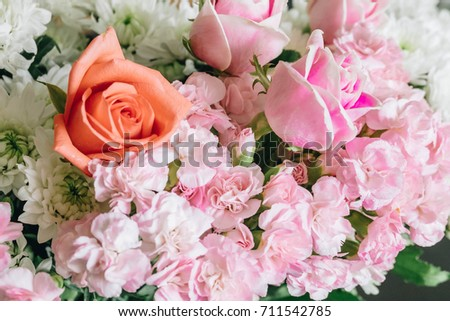 Colorful Fresh flowers close up for background - Flower color Pink,White,Orange