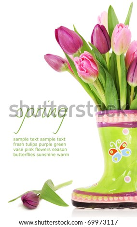 Colorful fresh spring tulips flowers in boots vase on white background