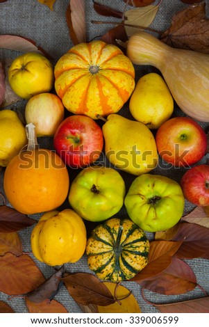 Colorful fruits and vegetables background.Fresh fruits and vegetables Composition with fresh fruits and vegetables. - stock photo