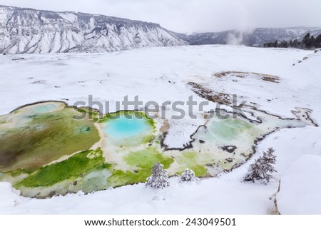 Colorful geyser in snow at Mammoth Hot Springs, Yellowstone National Park. - stock photo