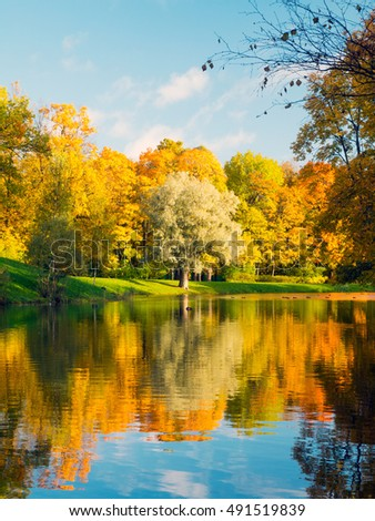 Colorful golden and yellow trees and pond in the autumn season in Tsarskoe Selo (Pushkin), Russia.
