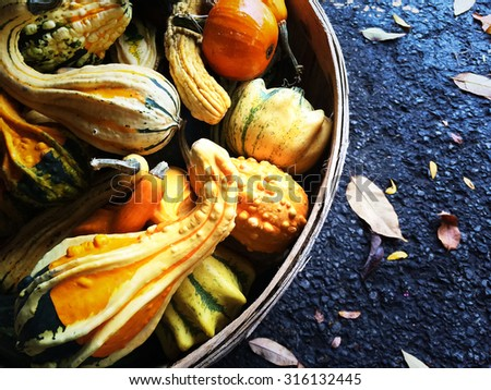 Colorful gourds in a basket. Autumn decoration. - stock photo