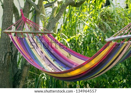 colorful hammock in the garden in the shades of the tree  colorful hammock garden shades tree stock photo 134964557      rh   shutterstock
