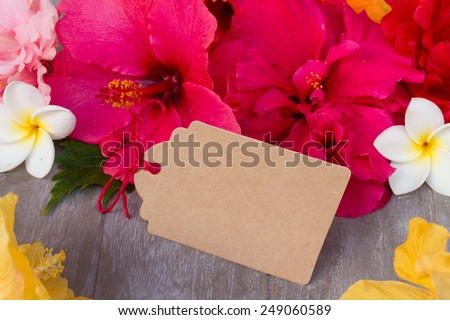 colorful  hibiscus flowers  as a frame with empty paper tag - stock photo