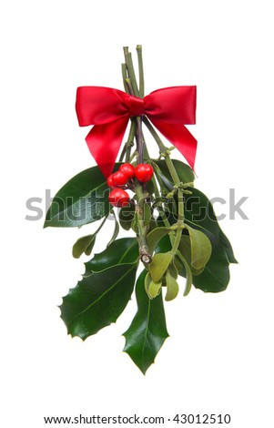 Colorful holiday Christmas mistletoe isolated over white background - stock photo