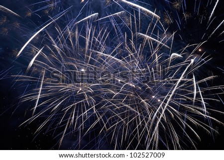 Colorful holiday fireworks on the black sky background.