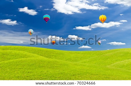 colorful hot air balloon and green grass meadow