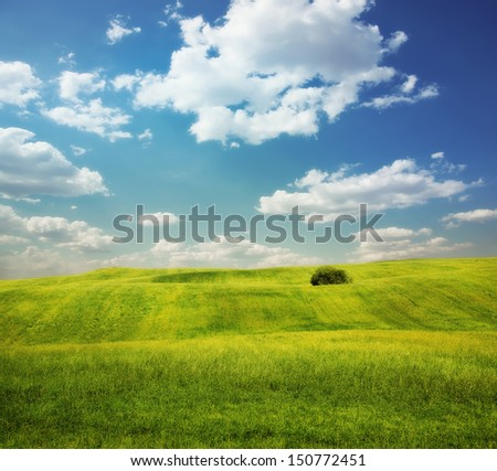 colorful landscape �¢?? field with hills - stock photo