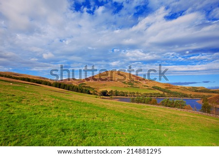 Colorful landscape scenery of hill slope covered by violet heather flowers and green valley, mountains and cloudy blue sky on background. Pentland hills, Scotland - stock photo
