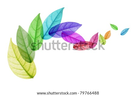 Colorful leaf Rotation - stock photo