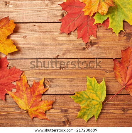 Colorful maple leaves over the brown wooden boards as an autumn background composition