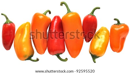 Colorful Mini Peppers: A rhythmic line of red, yellow, and orange little peppers isolated on a white background