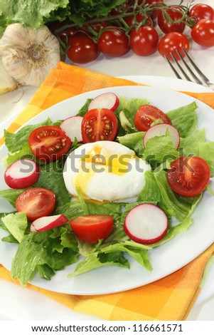 colorful mixed salad with poached egg