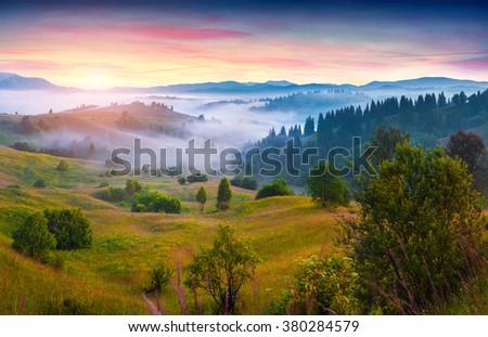 Colorful morning scene in the mountains. Foggy sunrise in Carpathians. Summer landscape in Lozaschina village location, Ukraine, Europe.  - stock photo