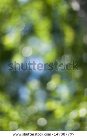 Colorful Nature Bokeh Background - stock photo