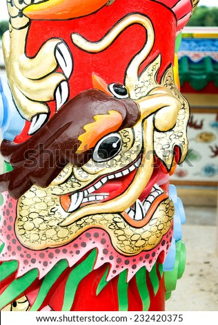 Colorful of head dragon