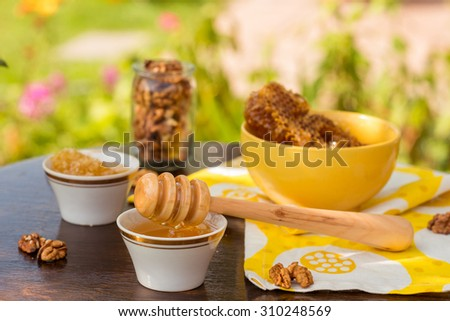 colorful outdoors photo of honey and nuts - stock photo
