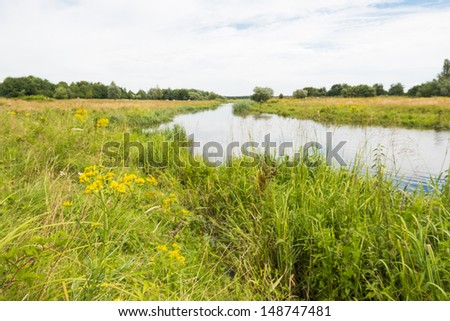 Colorful overgrown banks of a narrow river in a rural landscape.