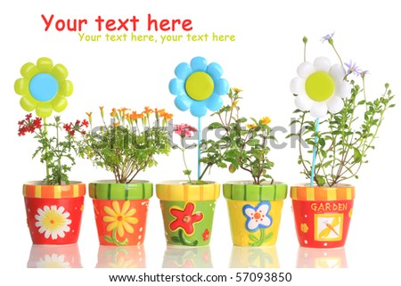 Colorful painted pots with pretty flowers. - stock photo