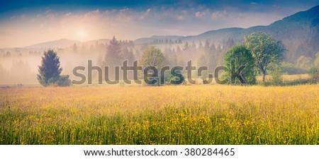 Colorful panorama of the summer morning in the foggy Carpathian mountains. Borzhava range, Transcarpathian, Ukraine, Europe. - stock photo