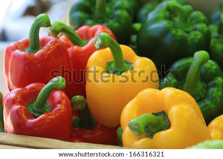 colorful  paprika  - stock photo