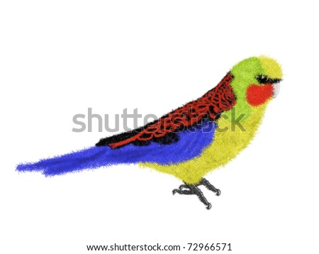 colorful parrot illustration - stock photo