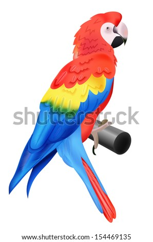 Colorful parrot macaw isolated on white background. Illustration for your bird wildlife design. Vivid bird sitting on perch. Raster version.
