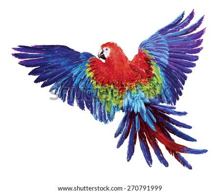 Colorful parrots. Beautiful macaw  - stock photo