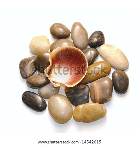 Colorful pebbles stones piled with seashell - isolated on white