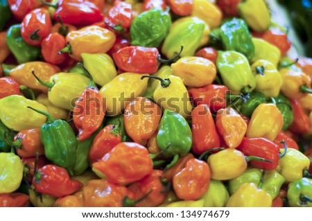 Colorful Peppers - stock photo