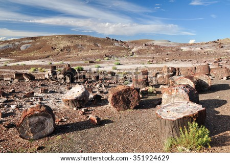 Colorful Petrified Wood at The Crystal Forest in Petrified forest National Park, USA - stock photo