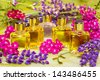 Colorful pink and purple fresh spring flowers with clear glass bottles of essential oil for use in aromatherapy or perfumery - stock photo
