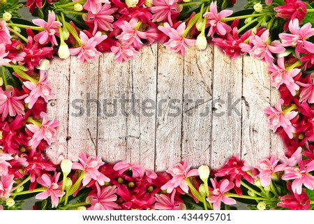 colorful pink blossom blooming flower border and frame on wooden background with copy space for text  - stock photo