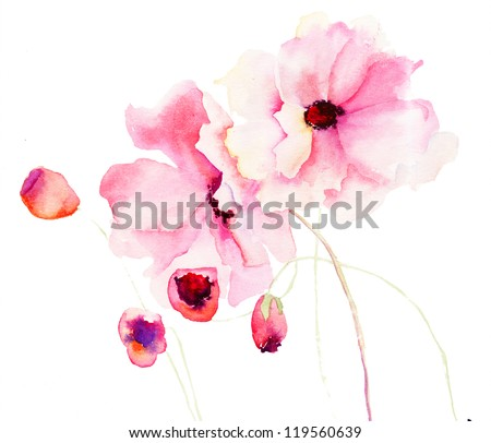 Colorful pink flowers, watercolor illustration - stock photo