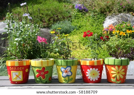 Colorful pots with pretty flowers, outside in the garden. - stock photo