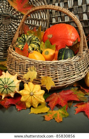 colorful pumpkins in basket with autumn leaves