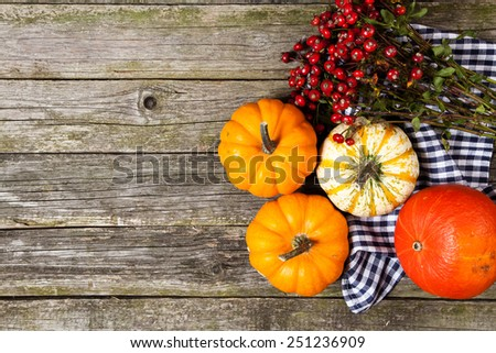 Colorful pumpkins on old wood - stock photo