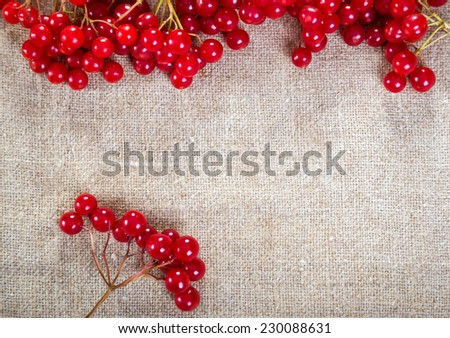 Colorful red viburnum berries on linen background  - stock photo