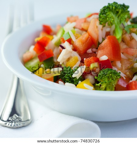 Colorful rice and vegetable salad - stock photo