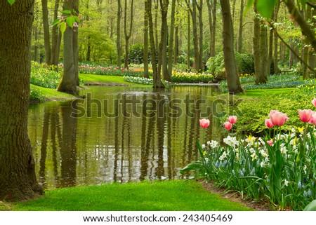 Colorful river landscape  in spring dutch garden Keukenhof, Netherlands - stock photo