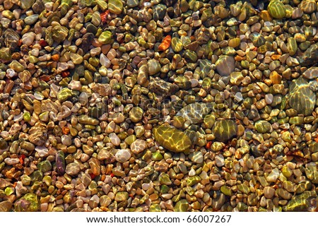 colorful rolling stones sea bottom pattern musk seaweed - stock photo