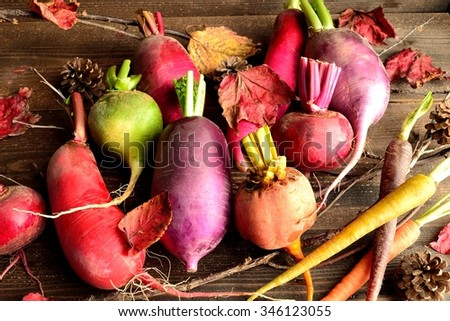 Colorful root vegetables with red autumn leaves - stock photo