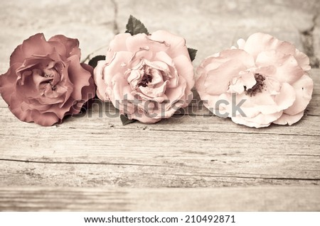 Colorful roses on vintage wooden background/Romantic floral frame background - stock photo