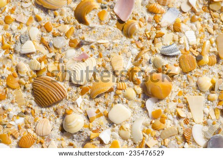 Colorful sand, stones and shells at beach as Natural texture background, backdrop or wallpaper. - stock photo