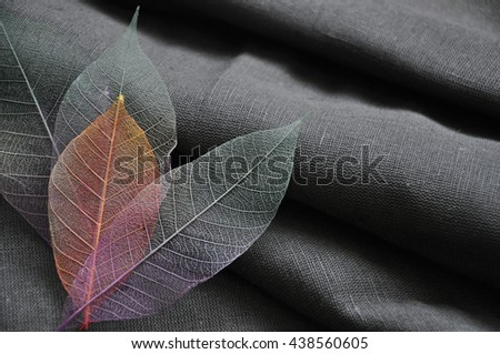 Colorful skeleton leaves in heart shape on dark fabric background - stock photo