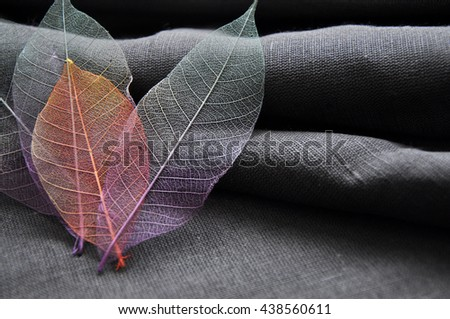 Colorful skeleton leaves in heart shape on gray background - stock photo