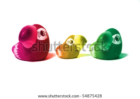 colorful small object of parrot in family