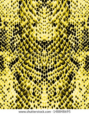Colorful snake skin, background - stock photo