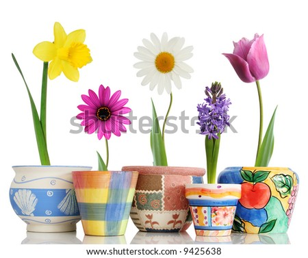 Colorful spring flowers in fun ceramic containers - stock photo